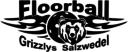 Logo Salzwedel
