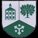 Logo Oelsa