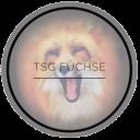 Logo Füchse