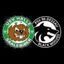 Logo Halle / Dessau
